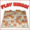 Bingo Facts